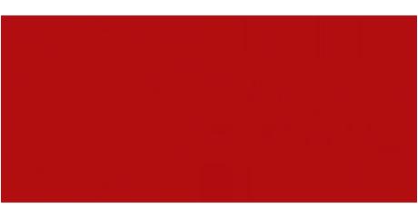logo_unipd_color